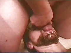 cumming on dady bears face